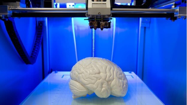 фото роздрукованого на 3Д-принтері стерильного мозку