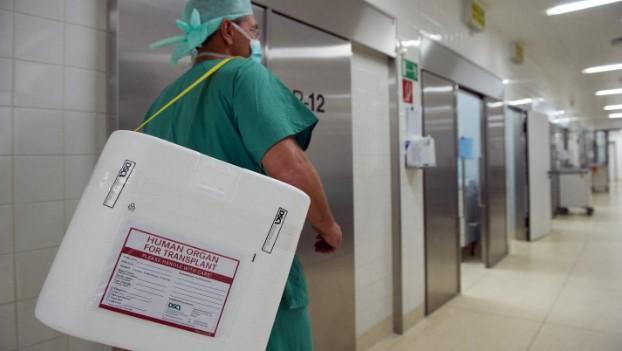 фото доктора, який несе орган для трансплантації в стерильному контейнері